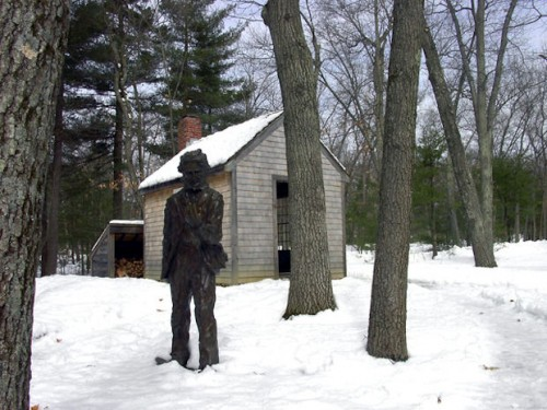 henry-david-thoreau-at-his-cabin-in-the-woods.jpg