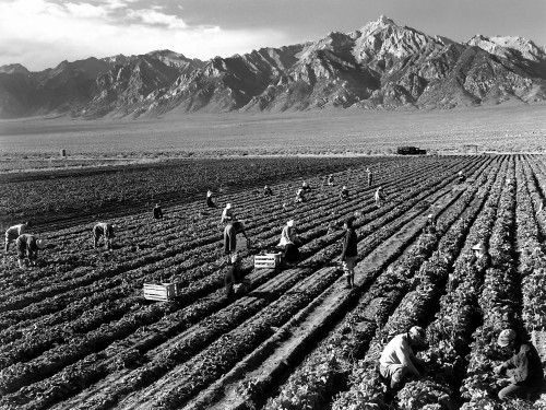 Ansel_Adams_-_Farm_workers_and_Mt._Williamson.jpg